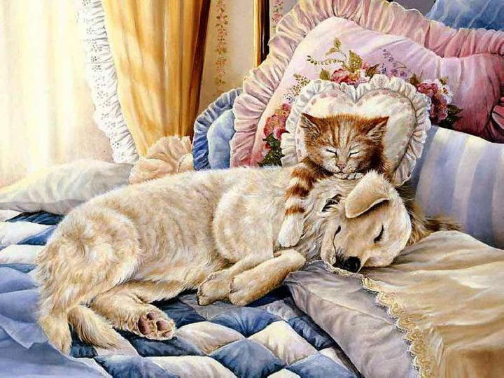 Paintings with dog and cat. Persis Clayton Weirs