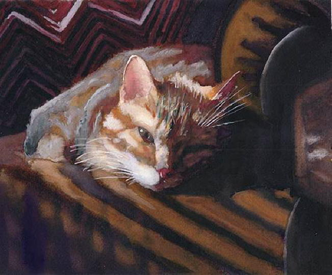 Portrait of cat. Alex Carter