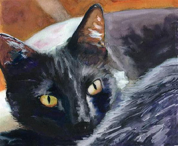 Portrait of cat. Alex Carter