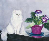 Cat and potted plant - Sharon Farber